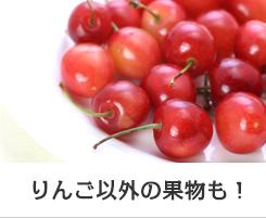 りんご以外の果物も