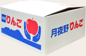 特選リンゴ10kg