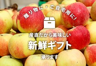 りんごギフトのご案内